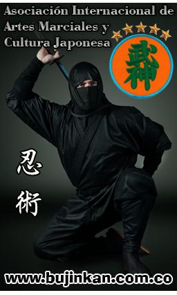 Bujinkan Ninja Dojo